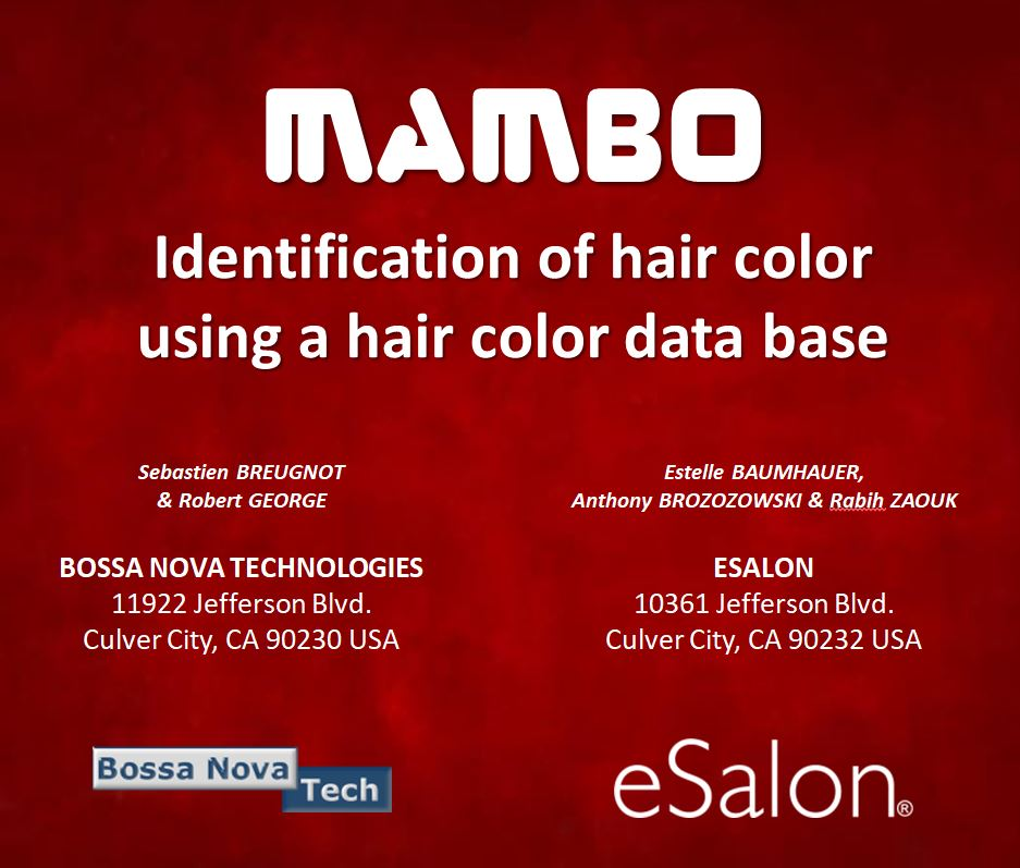 MAMBO hair color dyes degradation testing claims CIELAB colorimeter imaging color matching presentation