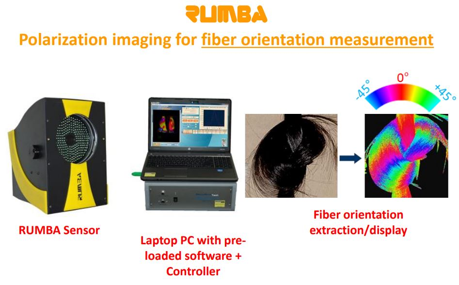 RUMBA Hair orientation alignment presentation polarization