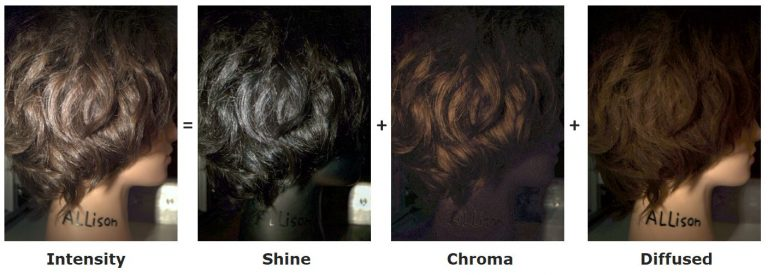 shine chroma specular diffuse in-vivo hair images